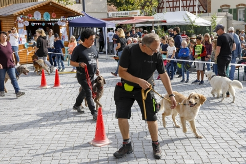 Demonstration des Hundevereins
